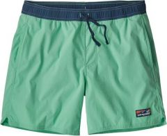 M's Stretch Wavefarer Volley Shorts - 16 in.